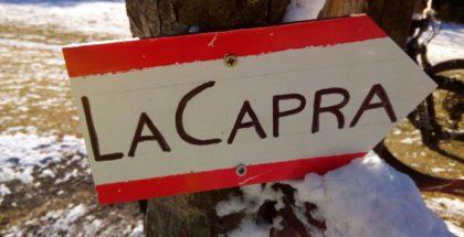 TrailCapra_06