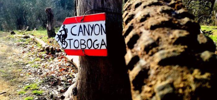 Su e giù per i trails delle Valli del Sorbo